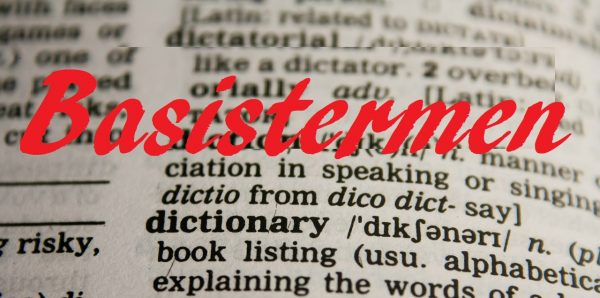 Basisinkomen, soorten en terminologie